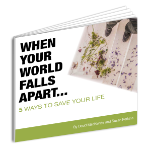 When Your World Falls apart Survival Guide