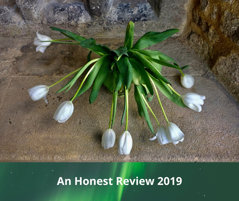 AN Honest review of 2019